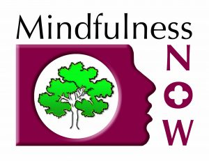 Outline Mindfulness Now programme