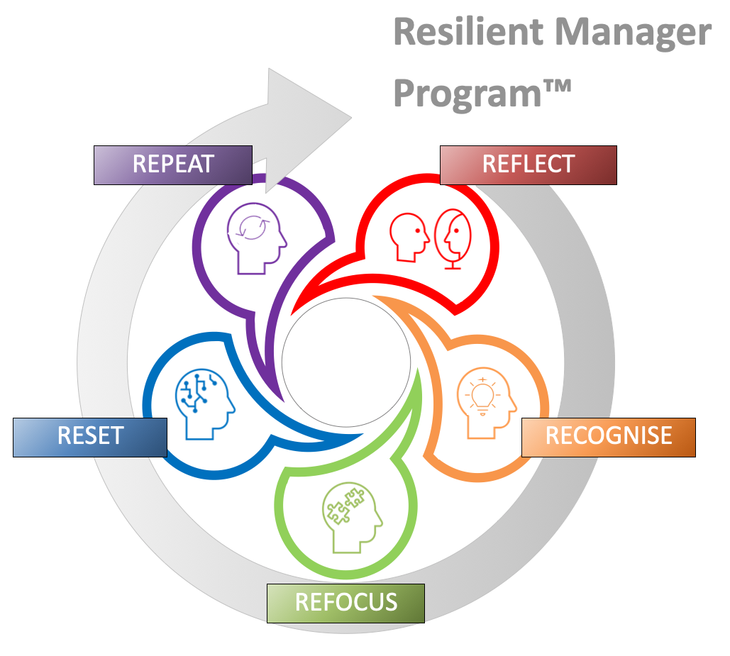 Resilient Manager Toolkit